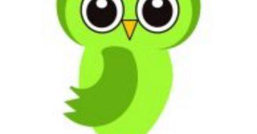 Cultured Owl [P]