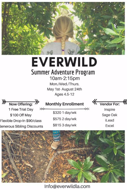 44330024_everwild_summer.png