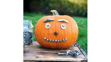 pumpkin bot2
