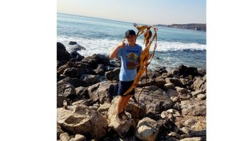 Aiden Feature