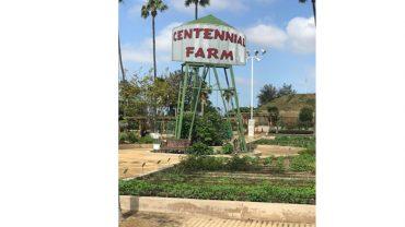 Farm Field Trip