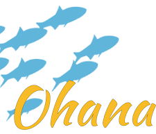 Ohana Learning Series [P]