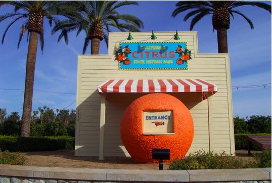 Citrus Park