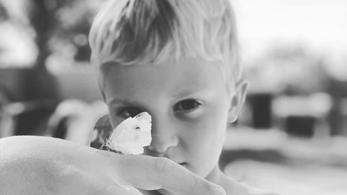 67730524_grayson_butterfly