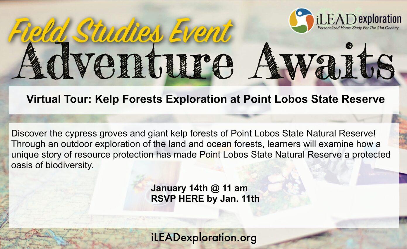 Kelp Forests Exploration