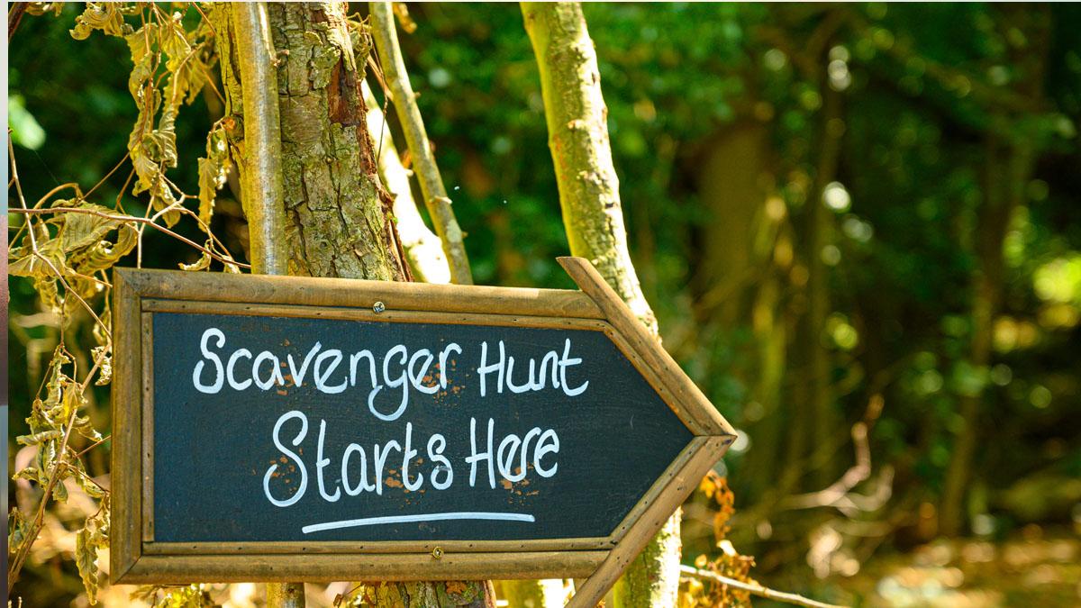 Number Scavender Hunt